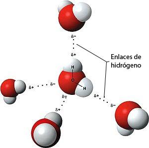 Moleculah20